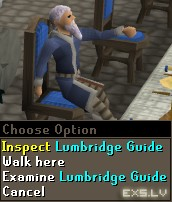 Lumbridge Guide